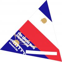 Sunfish, 2021 Sunfish World Championship Sail (NEW without sail numbers)